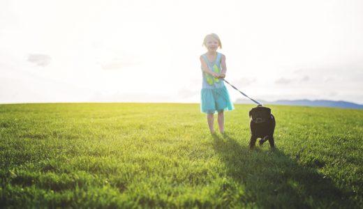 「幸せになりたい」人が、幸せを感じられる自分になる5つのステップ